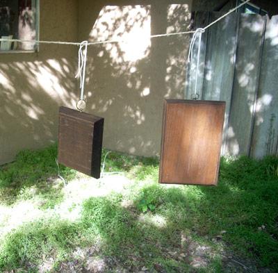 dryingplaques