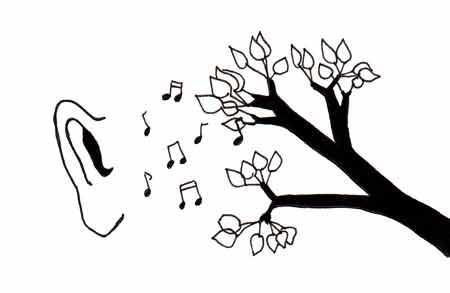 listeningtotrees