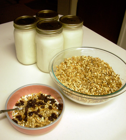 yogurt_muesli