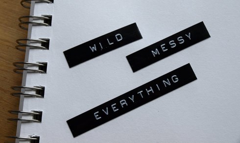 wild_messy_everything